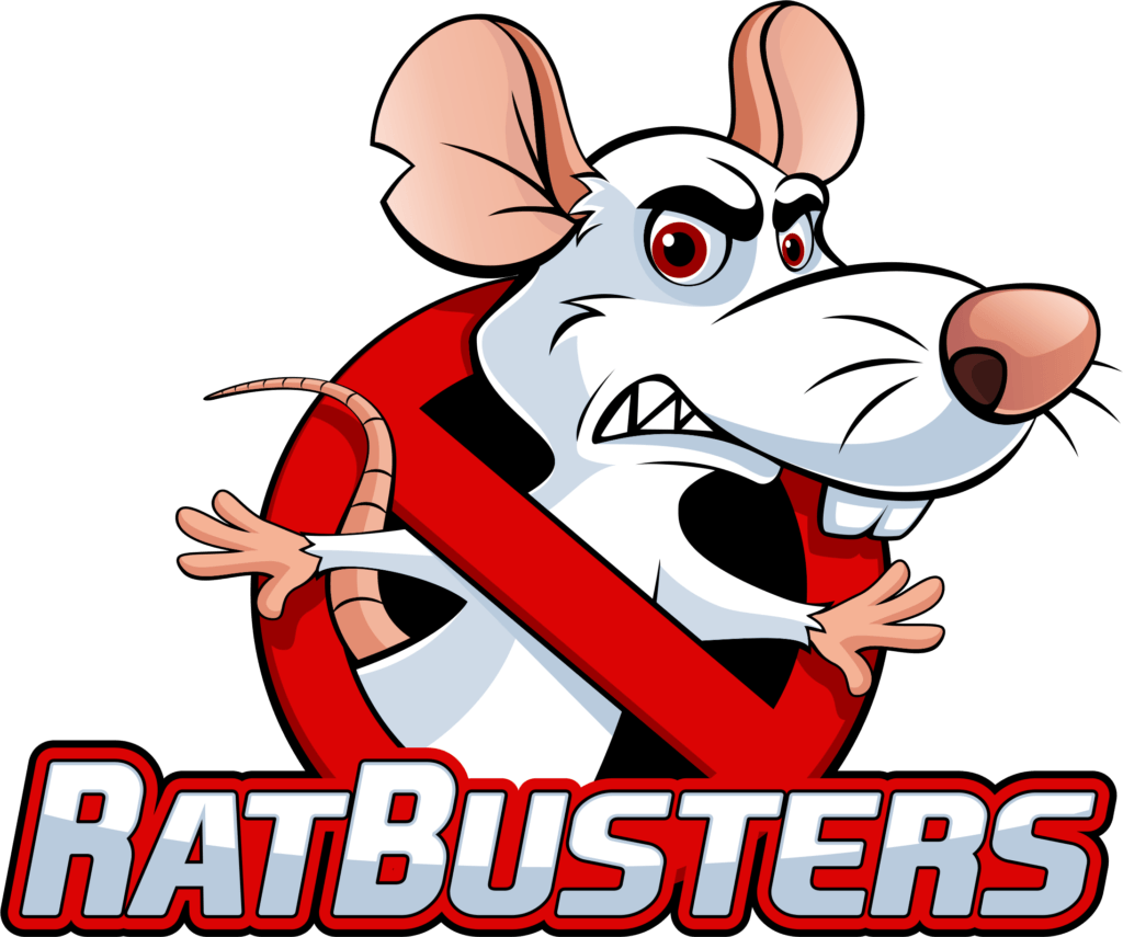 rat busters rat removal